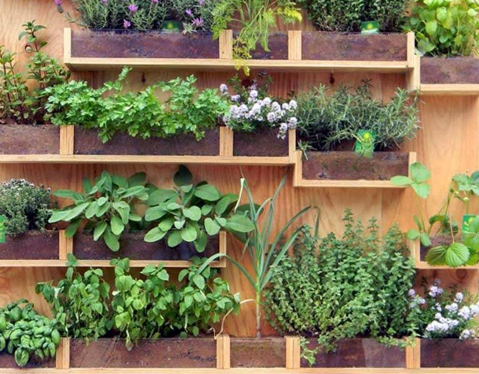 Come creare un piccolo orto sul balcone di casa bernabei vivai - Creare un giardino sul balcone ...